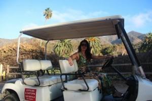 catalina-island-golf