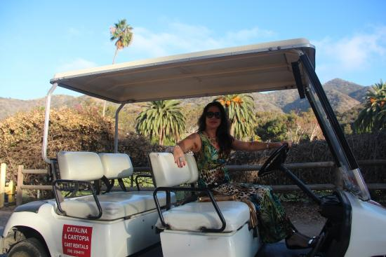 Day Golf Cart Rental Catalina Island