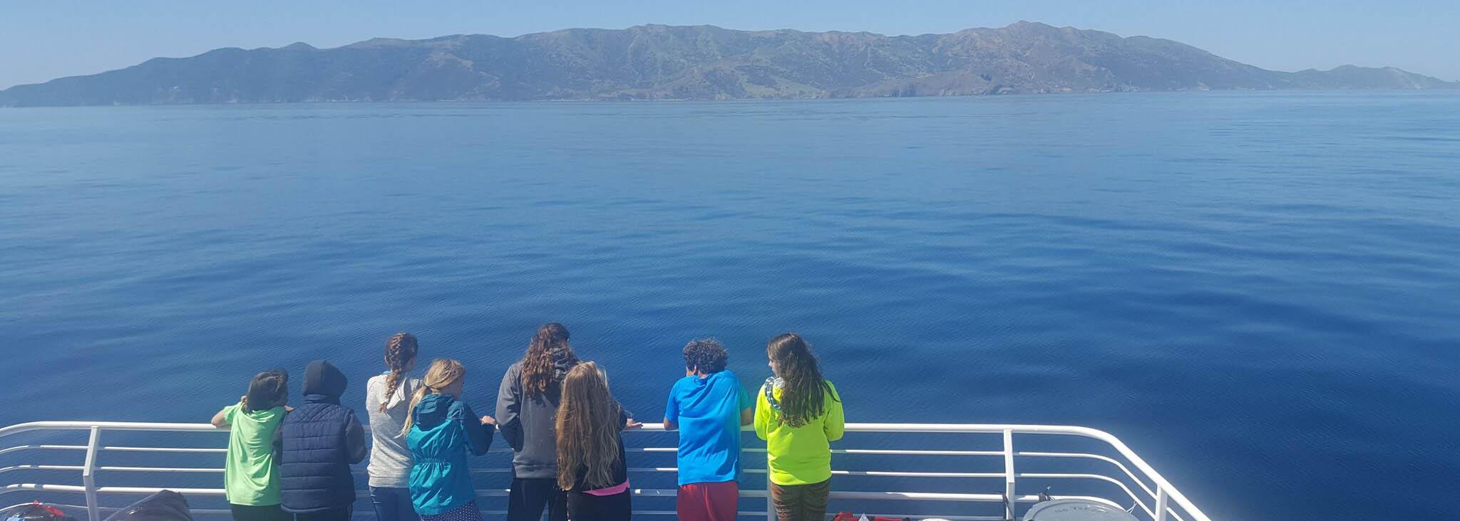 catalina-island-sea-camp-msa